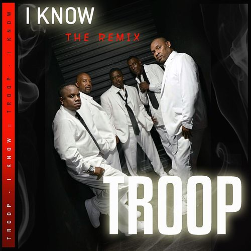 Iknow (The Remix) von Troop