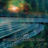72 Tracks Of A Natural World by Rain Sounds (2)
