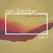Somewhere Right Here , Vol. 3 von Various Artists