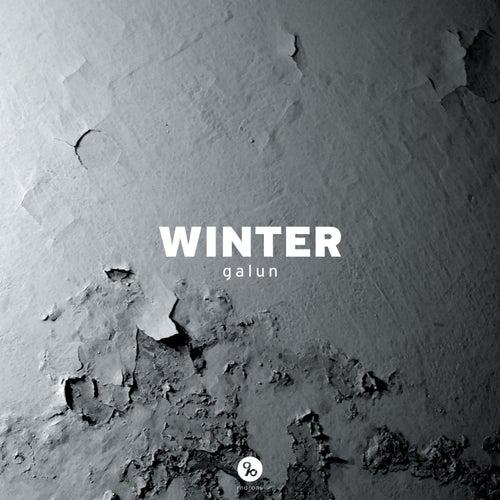 Winter by Galun