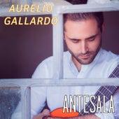 Antesala de Aurelio Gallardo