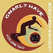 Bongo Boy Records: Gnarly Wave, Vol. 2 by Various Artists