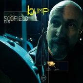 Bump by John Scofield