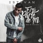 Eres Parte De Mi by Estevan