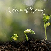 A Sign of Spring by Nature Sounds