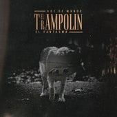 El Trampolin (feat. El Fantasma) by Voz De Mando
