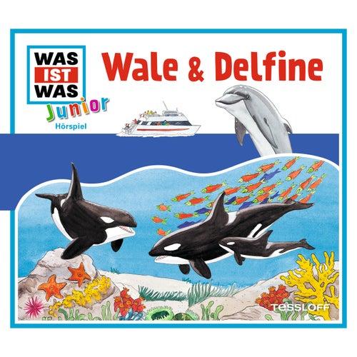 22: Wale & Delfine von Was Ist Was Junior