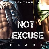 Not Excuse (Section 1) by Heart