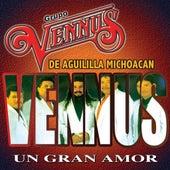 Un Gran Amor by Grupo Vennus
