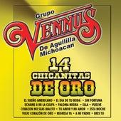 14 Chicanitas De Oro by Grupo Vennus