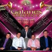 Un Año Mas (Versión Popular) by Galanes Orquesta