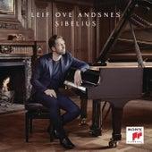 10 Pieces for Piano, Op. 24/Romance, No. 9 de Leif Ove Andsnes