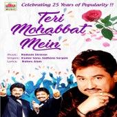 Teri Mohabbat Mein by Kumar Sanu