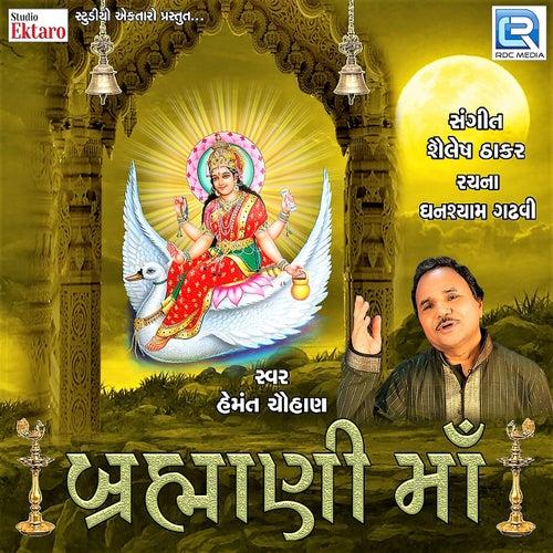 Brahmani Maa by Hemant Chauhan