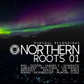 Northern Roots 01 by Various Artists