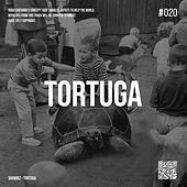 Tortuga by Showbiz
