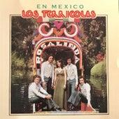 En Mexico by Los Terricolas