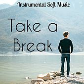 Take a Break - Instrumental Soft Music for Healing Massage Bio Life with New Age Nature Sounds by Various Artists