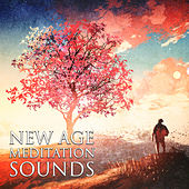 New Age Meditation Sounds – Calming Waves, Easy Listening, Stress Free, New Age Relaxation by New Age
