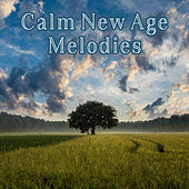 Calm New Age Melodies – New Age Relaxation, Inner Peace, Music to Calm Down, Stress Relief by Relaxing Sounds of Nature