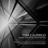 Wash the Dusk with Silver by Tom Caufield