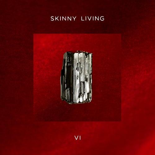 6 von Skinny Living