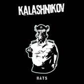 Rats by Kalashnikov