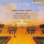 Haydn: Piano Concertos by Academia Allegro Vivo