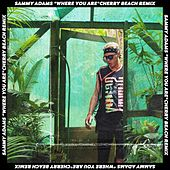 Where You Are (Remix) [feat. Cherry Beach] by Sammy Adams