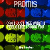 Can I Just See What It Feels Like to Kiss You (The Remixes) by Promis