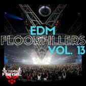 EDM FloorFillers Vol.13 by Various Artists