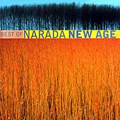 Best of Narada: New Age by Various Artists