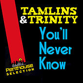 You'll Never Know by The Tamlins