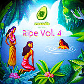 Ripe, Vol. 4 by Various Artists