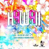 Hawaii Riddim by Various Artists