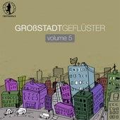 Grossstadtgeflüster, Vol. 5 by Various Artists