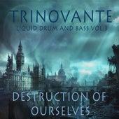 Liquid Drum and Bass Vol.3 - Destruction of Ourselves by TRiNoVaNTe