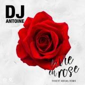 La Vie en Rose (Robert Abigail Remix) von DJ Antoine