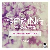 Spring Relaxation 2: New Age Music for a Natural Soul Relief by Various Artists