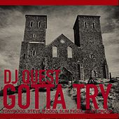 Gotta Try by DJ Quest