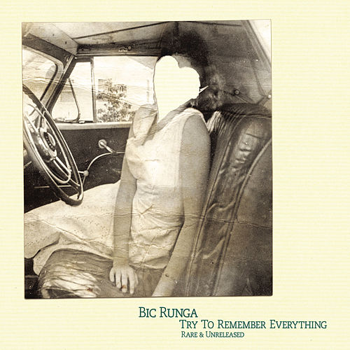Try To Remember Everything by Bic Runga
