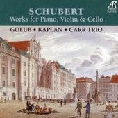 Schubert Trios: Works for Piano, Violin & Cello by David Golub