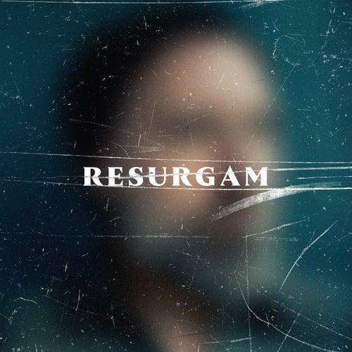 Resurgam by Fink (UK)