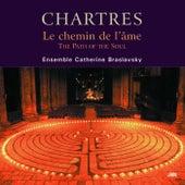Chartres - The Path of the Soul von Catherine Braslavsky