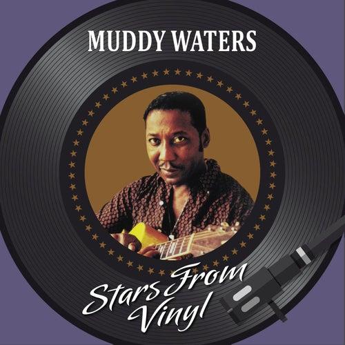 Stars from Vinyl von Muddy Waters