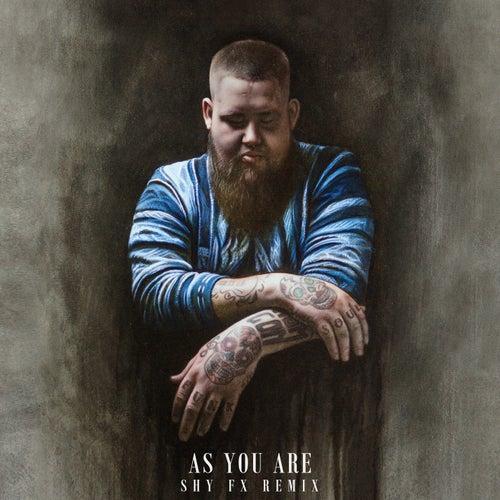 As You Are (Shy FX Remix) de Rag'n'Bone Man