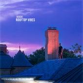 Rooftop Vibes de Akash