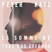 La somme de tous nos efforts by Peter Katz