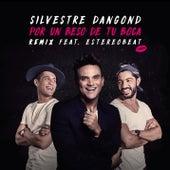Por un Beso de Tu Boca (Remix) by Silvestre Dangond