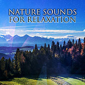 Nature Sounds for Relaxation – Peaceful Music to Rest, Calm Down with New Age Music, Nature Waves, Stress Relief by Calming Sounds